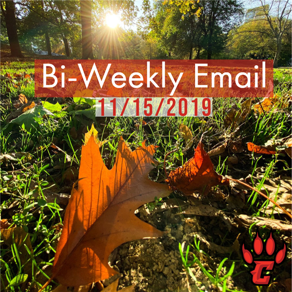 Community Bi-Weekly Newsletter - November 15, 2019